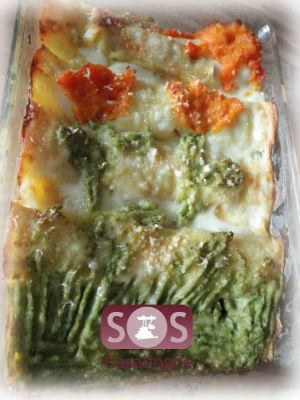 Quadro di Cannelloni al ragù con verdure